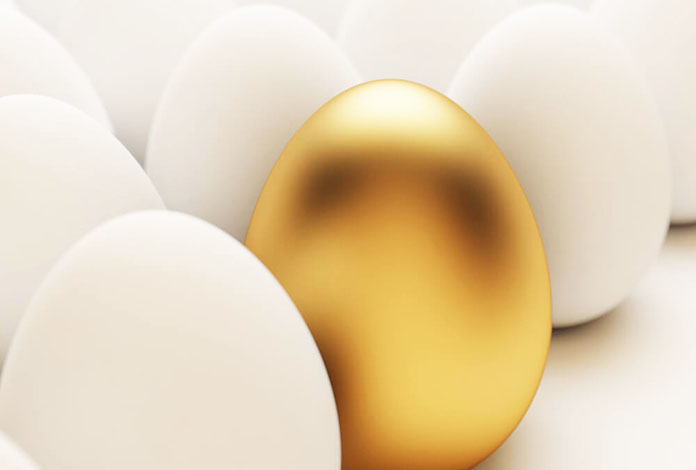 tüp bebek tedavisinde yumurta kalitesi